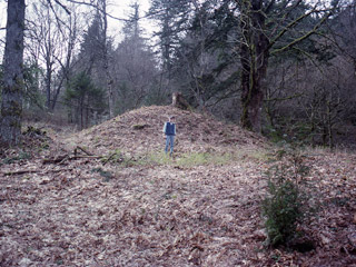 A man stands in front of a large earthen mound covered in fallen leaves.