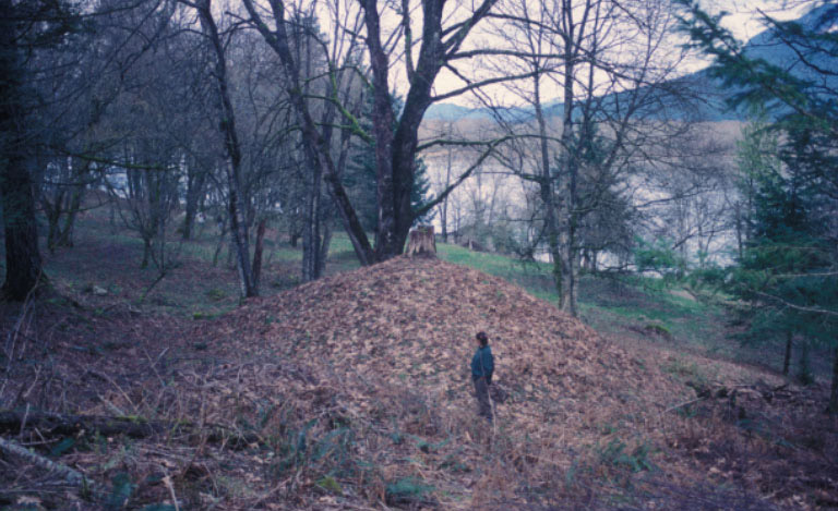 A man stands in front of a large earthen mound, gazing at it.