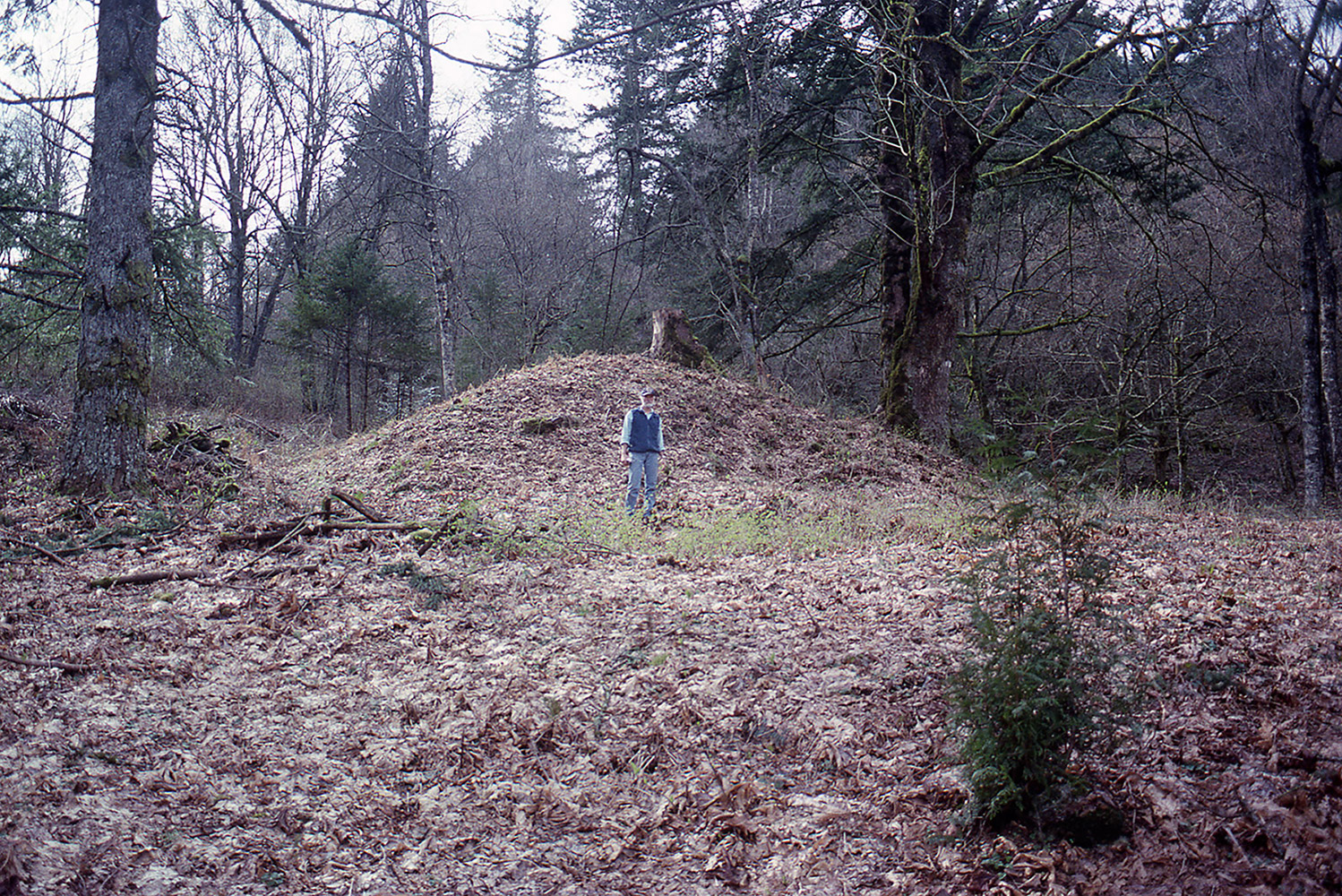 A man stands in front of an earthen mound covered in fallen leaves.