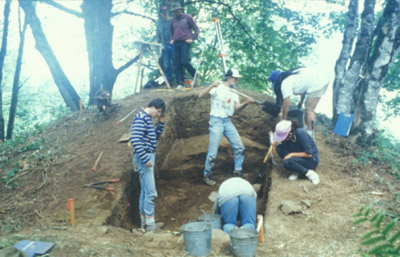 A group of people use shovels and other tools to excavate a large mound in the forest.