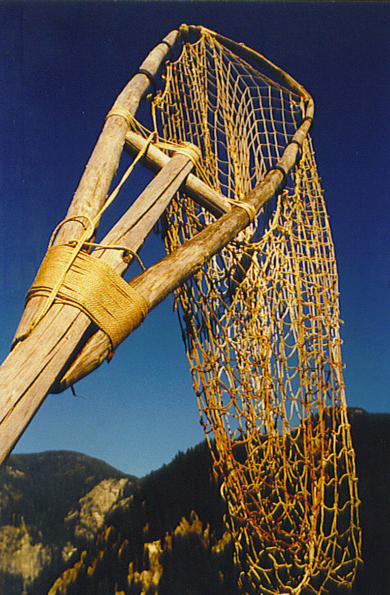 A long narrow net attached to a frame at the top of a long pole.