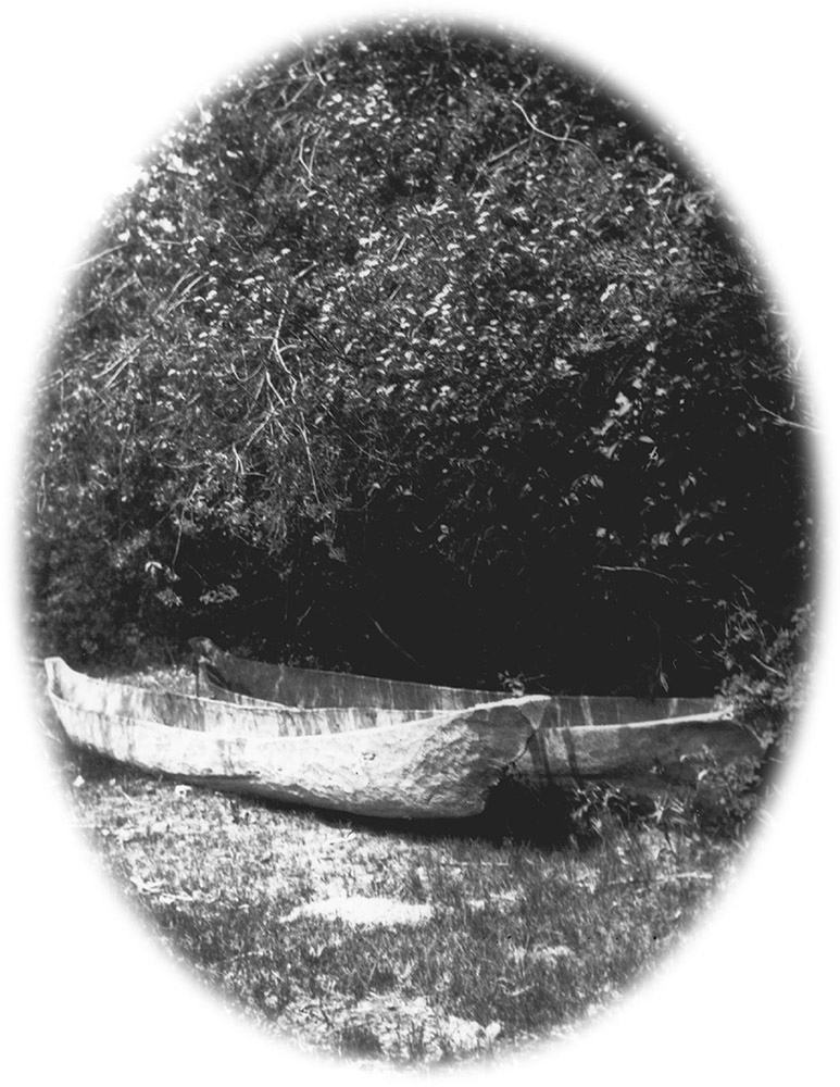 A black and white photograph of two canoes sitting ashore underneath a dense patch of trees.