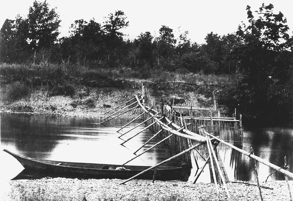 A black and white photograph of a fish weir in a river channel with a Coast Salish canoe in the foreground