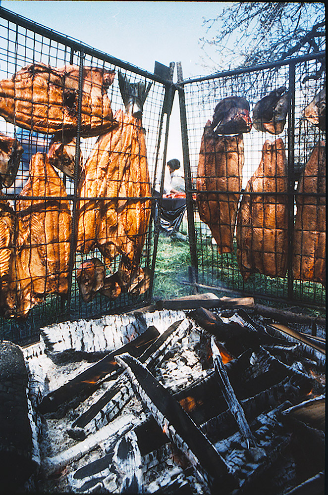 There are two wire racks set up vertically beside a large outdoor firepit; on each rack, there are fish bodies and heads that are being dried.