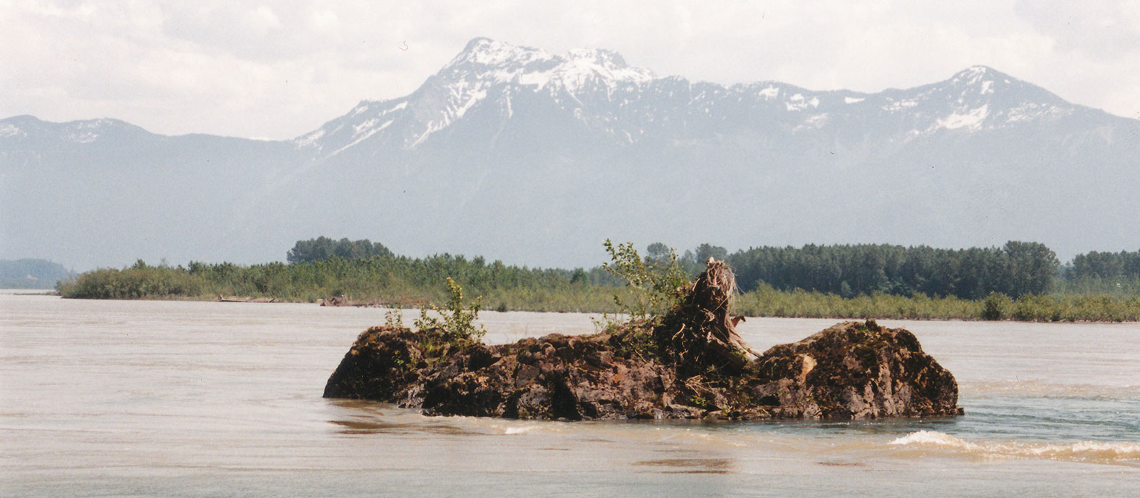 Transformer Stone in the Fraser River with Mount Cheam in the background